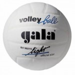 Волейбольний м'яч