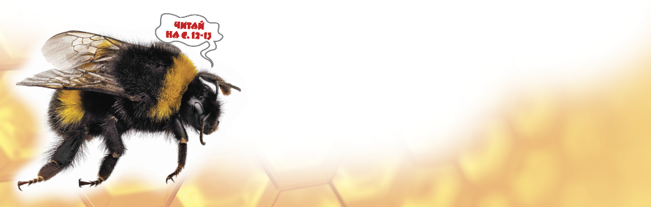 Banner_7_2017_Bees_1